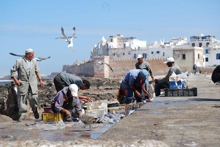 Fishermen in Morroco