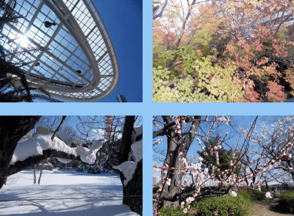 Seasons in Japan