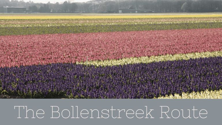 The Bollenstreek Route is a popular choice of things to do in Amsterdam