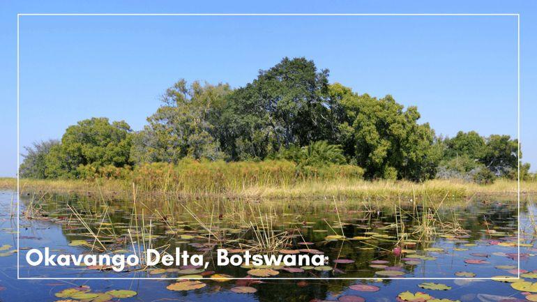 Okavango Delta, Botswana is first on our list of the best UNESCO World Heritage sites