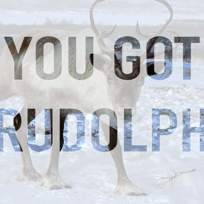 You got Rudolph in our Christmas Quiz